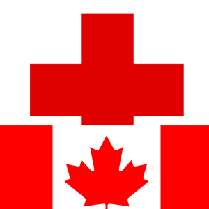 Canada Red Cross donations bitcoin